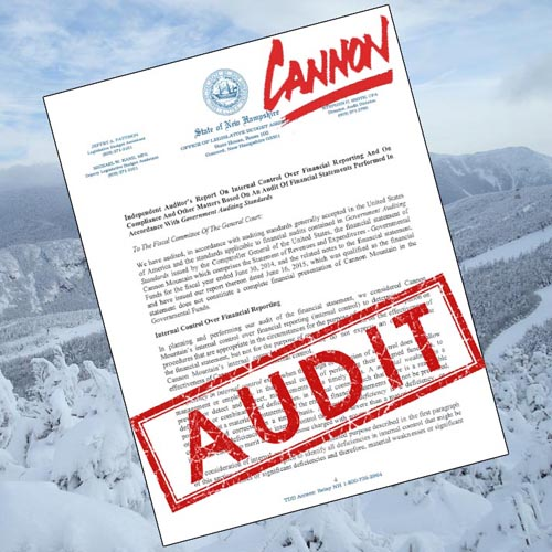 Cannon FY14 Audit